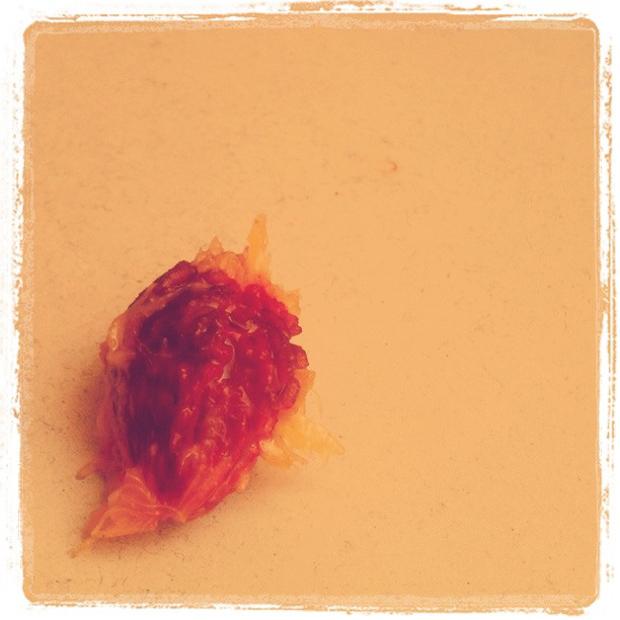 A peach Pit