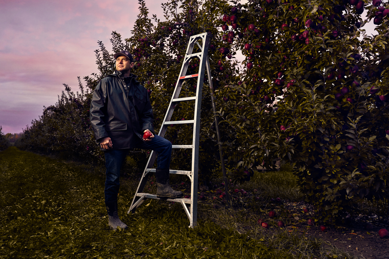 Garett Mayer climbing ladder in an apple orchard. Garett is the 5th generation owner of Mayer Brothers Cider Mill in the Western NY town of West Seneca. Garett, The 165 year old cider press, and surrounding orchards were photographed as part of a success stories campaign for M&T Bank, with which Mayer Brothers has been doing business for 90+ years.